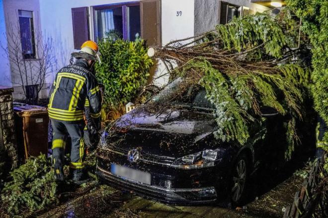 GISMETEO.KZ: Германия готовится к удару шторма «Сабина» с ветром до 110  км/ч - 8 февраля 2020   Климат   Новости погоды.